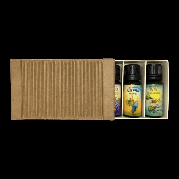 cestovní krabička s esenciálními oleji citron, eukalyptus, máta peprná, levandule a tea tree